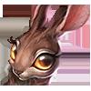 Волшебный Кролик и другие новости